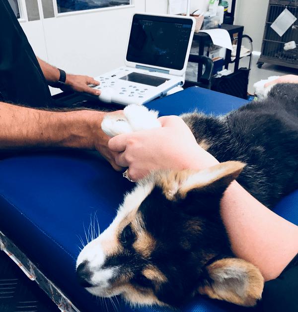 Opt-Ultrasound